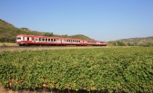Train Rouge du Pays Cathare et du Fenouillèdes