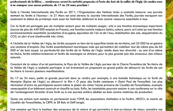 JOURNEES INTERNATIONALES DES FORETS 2018 : RABOUILLET 4 - Rabouillet